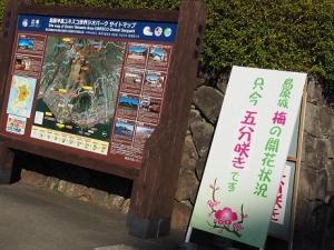 Photo_20210210201803